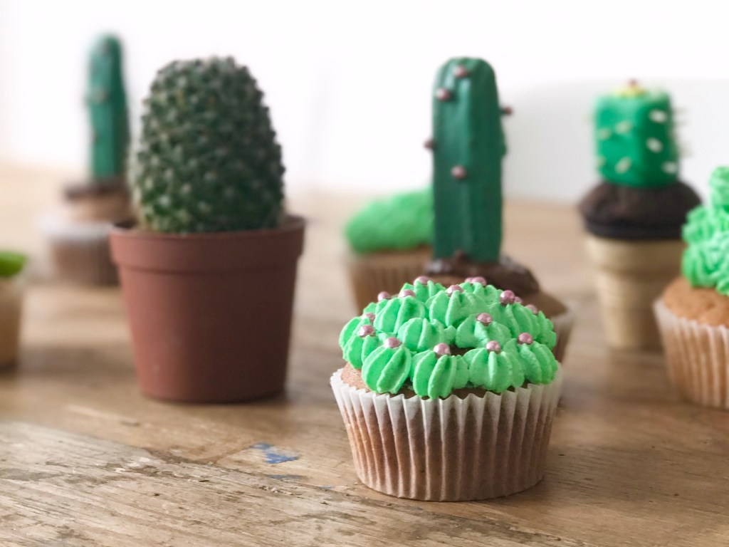 camesapila_cactusparty_kaktuscupcakes_14