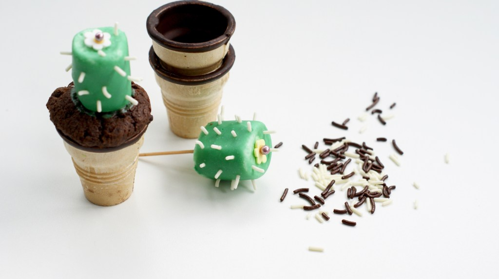 camesapila_cactusparty_kaktuscupcakes_8